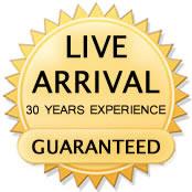 Live Arrival Guarantee