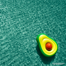 Avocado - Pool Float Series