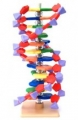 molymod® DNA and Related Model Spare Parts