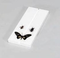 Entomological Items