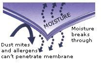 stretch-knit-membrane-flow.jpg