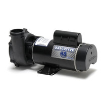 "Waterway Executive Pump 48F 1HP 2 Speed 2""/2"""