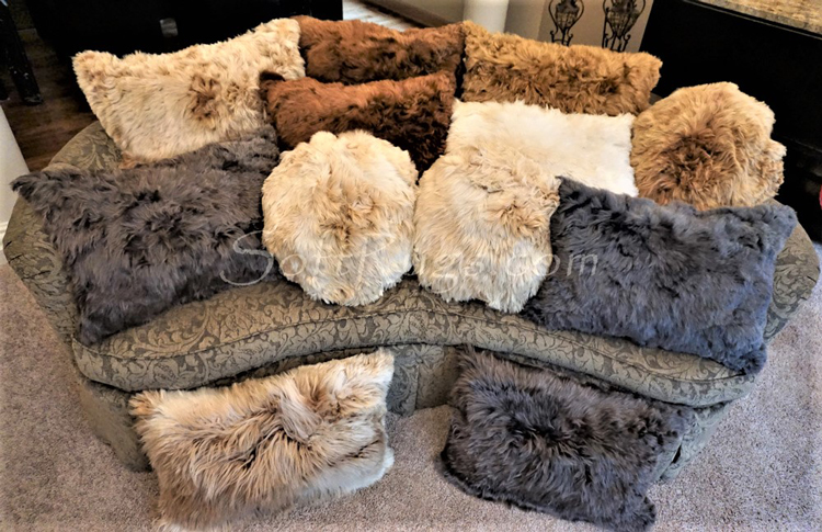 Round and Rectangular Suri Alpaca Fur Pillows in Brown, Chamapagne, and 2 Shades of Gray