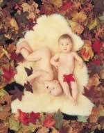Babycare Shorn - Shorn natural lambskin comforter by Bowron