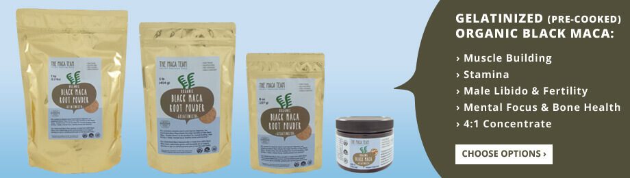 gelatinized black maca powder
