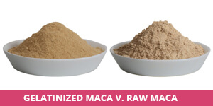 gelatinized-vs-raw.jpg