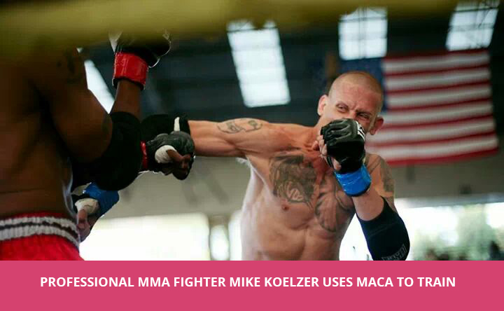 mike-koelzer-fight.jpg