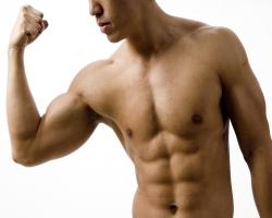 Maca bodybuilding