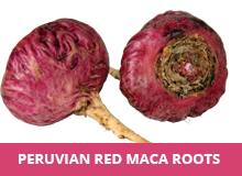 red-maca-root.jpg