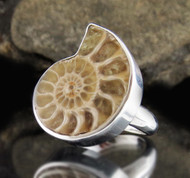 Ammonite Sterling Silver Ring 3