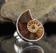 Ammonite Sterling Silver Ring 4