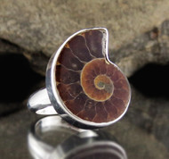 Ammonite Sterling Silver Ring 5