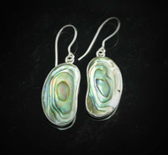 Paua Shell Earrings 3