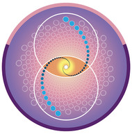 Jain 108 Phi Vesica Decals x 2