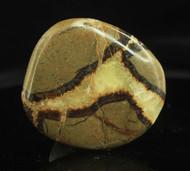 Septarian Nodule Flat Stone 5