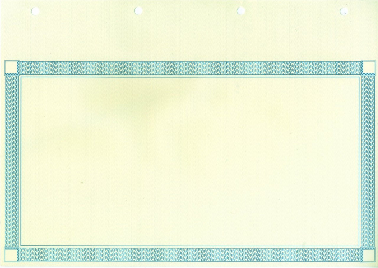 share certificate paper share certificates