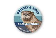 Wholesale River Otter Head Sticker