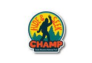Wholesale Die Cut Hide & Seek Champ Sticker