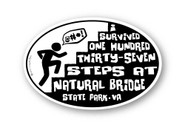 Wholesale I Survived Climbing Steps Sticker