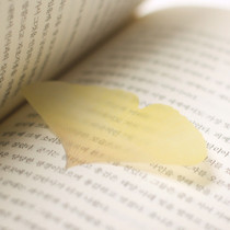 Ginkgo leaf transparent sticky memo notes Medium