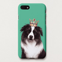 Border Collie Betty polycarbonate iPhone case