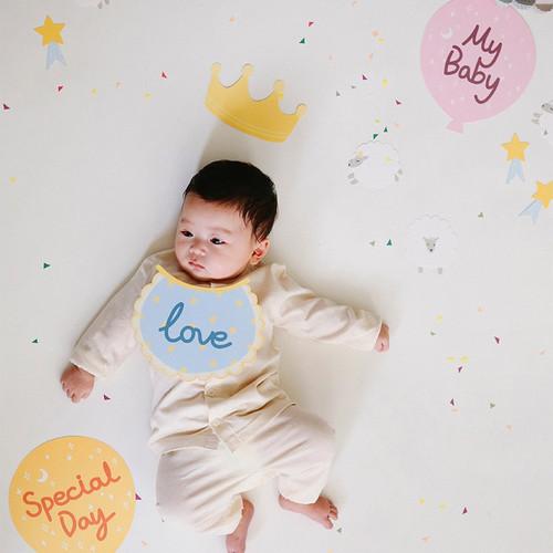 Dailylike Baby photo stick props set