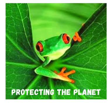 protectingtheplanetfrog.png
