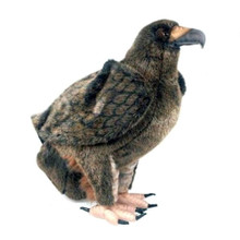 Golden Eagle (small)
