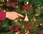Christmas Tree Touch Ornament