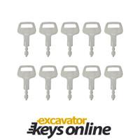 TCM T800 Key (set of 10)