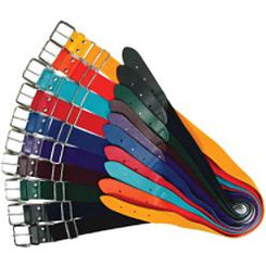 One size elastic belt in a variety of colors