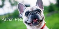 Patron Pets Project