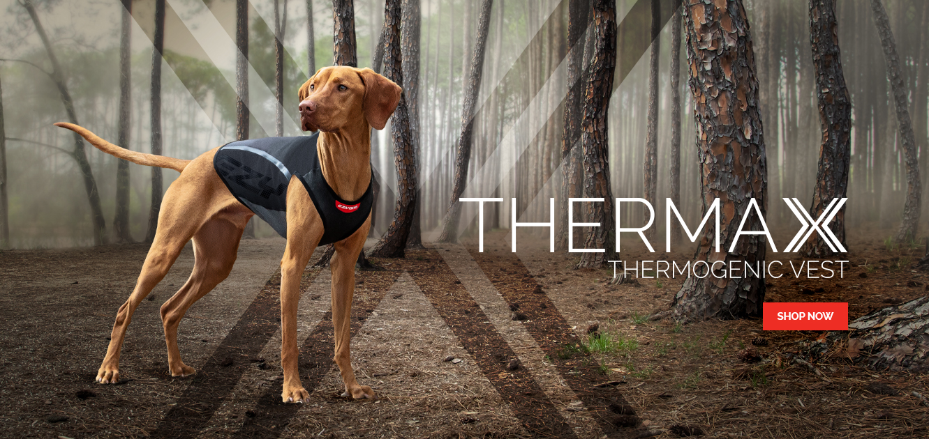 """Thermax"