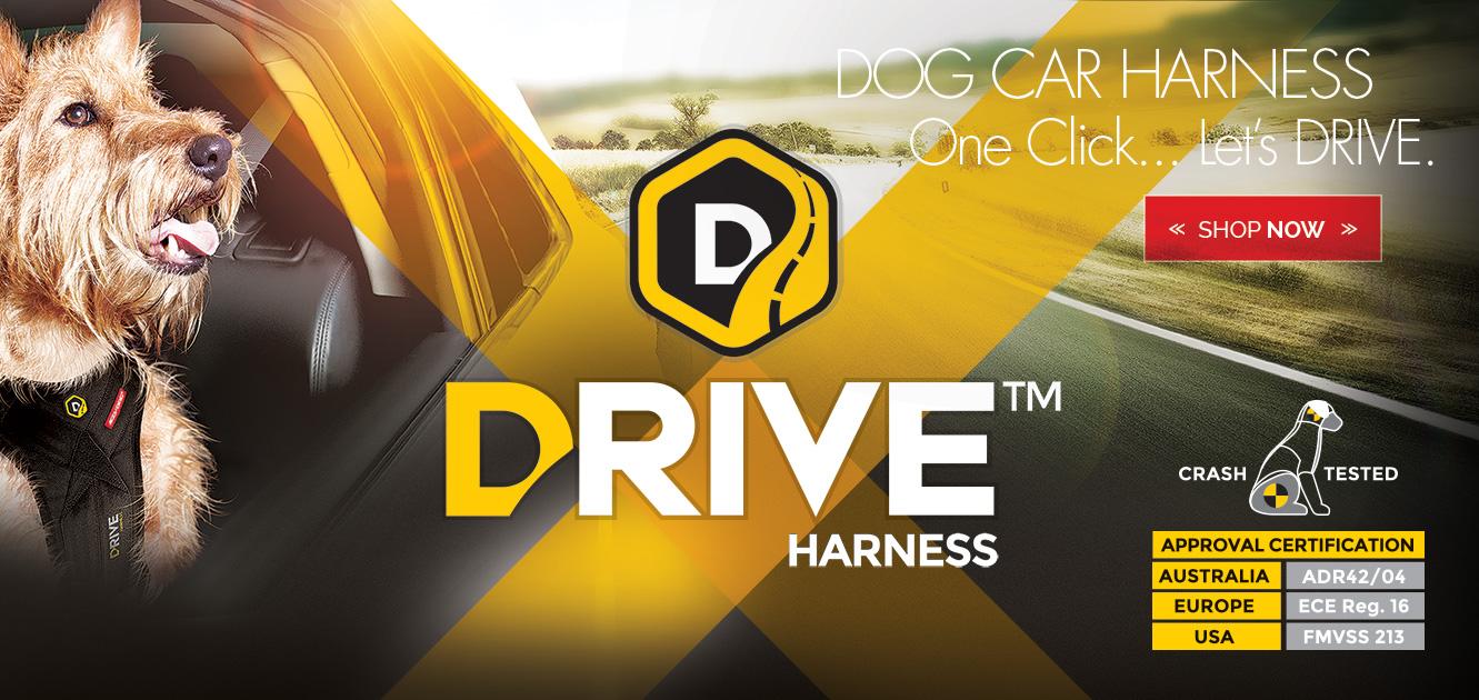 EzyDog Drive Harness