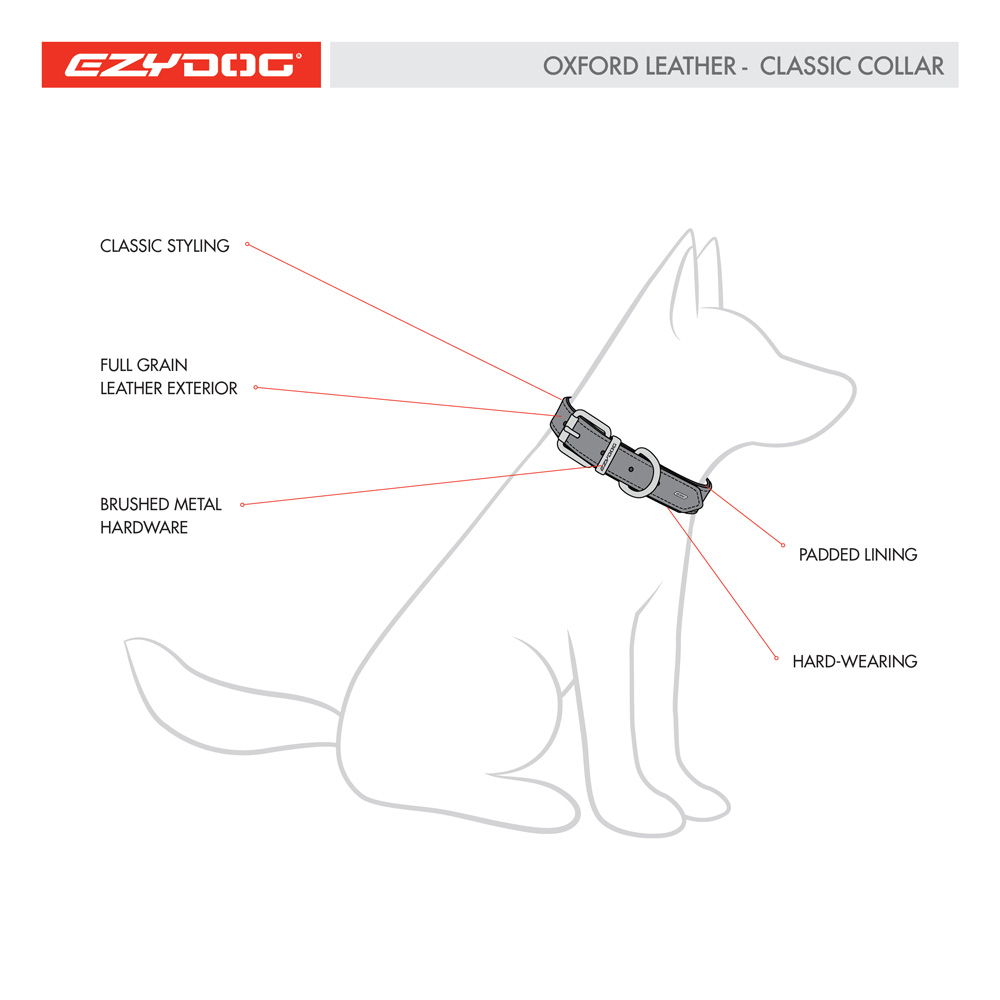 oxford-leather-classic-collar-dog-diagram-square.jpg