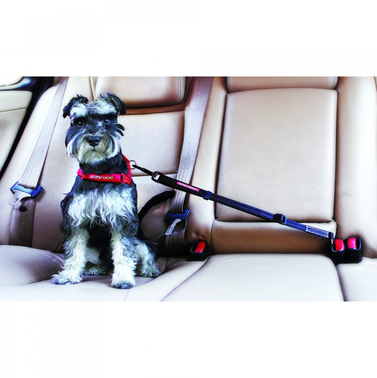 Dog Travel Harness   Click Seat Belt Restraint