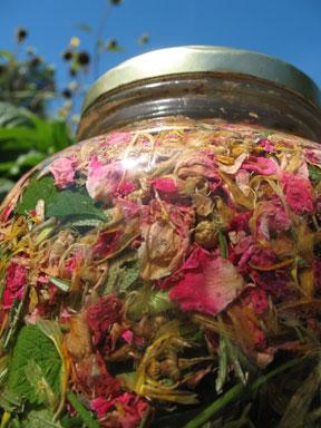 Herbs Infusing In The Sun