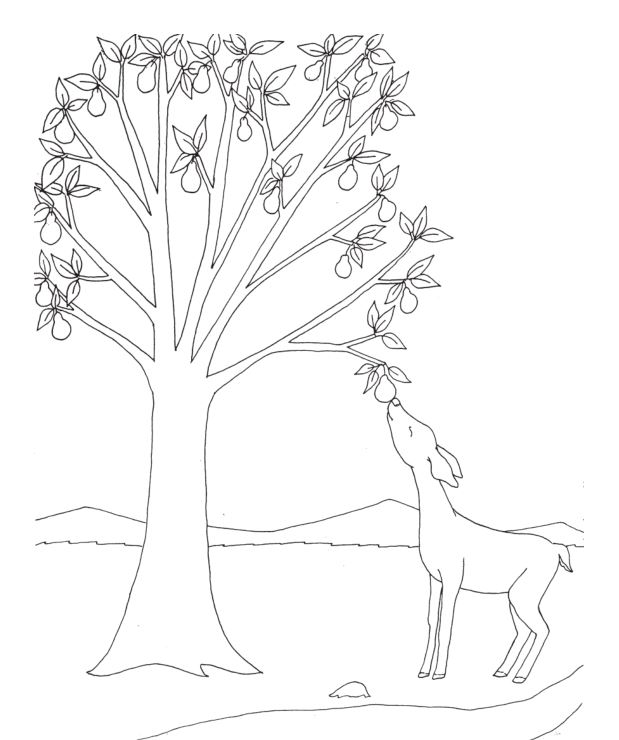 Download and print a coloring page!