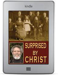 Surprised by Christ (ebook)
