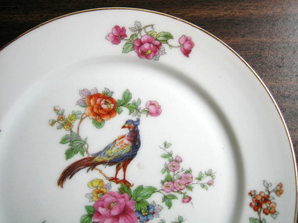 Vintage European Chinoiserie Exotic Bird Roses medium Decorative Plate Edge www.DecorativeDishes.net