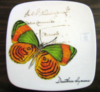 Decorative Plate - Bold Green Orange Butterfly Square Italy Plate Large