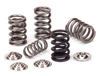 Supertech Valve Springs for SR20DET