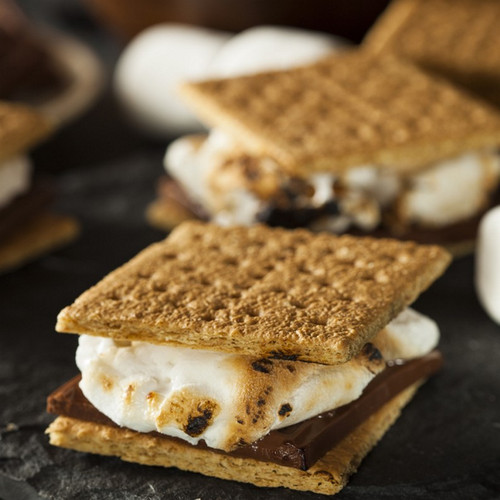 This is a picture of a s'mores treat.