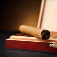 Cuban Cigar Fragrance Oil