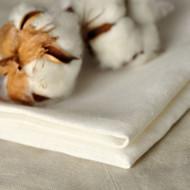 Clean Cotton Fragrance Oil
