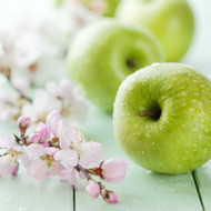 Green Apple Essence Fragrance Oil