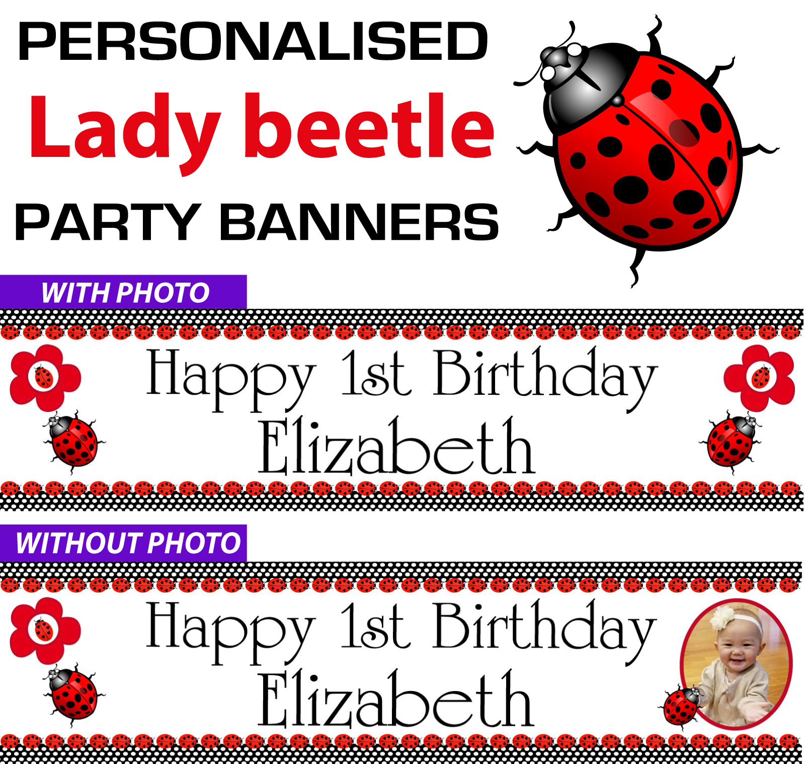 lady-beetle-party-ebay.jpg