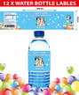 Personalised Bluey Birthday Party Water Bottle Labels