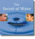 THE SECRET OF WATER