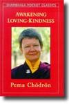 AWAKENING LOVING-KINDNESS (Pocket Book)